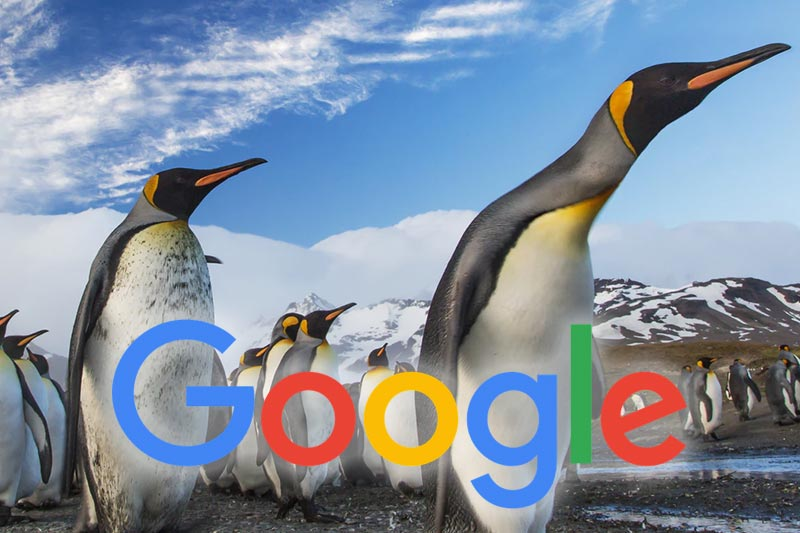 google penguin link earning